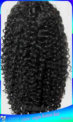 Indian Good Quality Jerry Curly Human Hair Lace front Wig